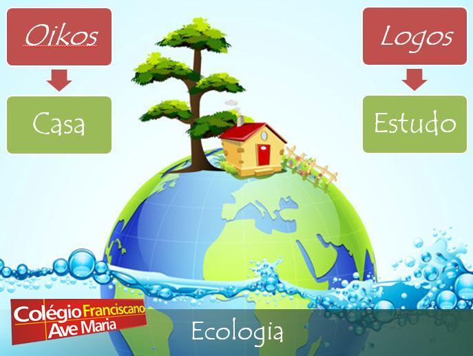ecologia_lautado